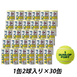 FORT(フォート) 1箱(60球)