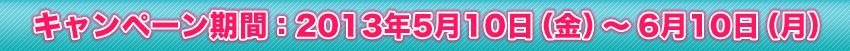 キャンペーン期間:2013年5月10日(金)~5月31日(木)